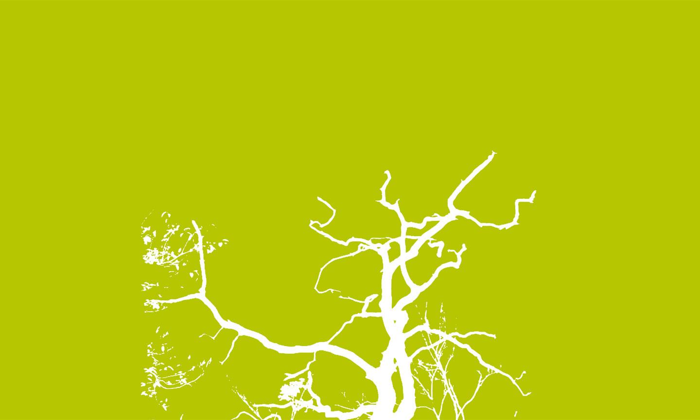 bio-energy-cover