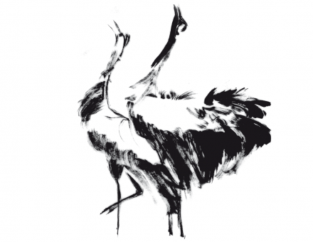 Crane Dance – Book Illustration
